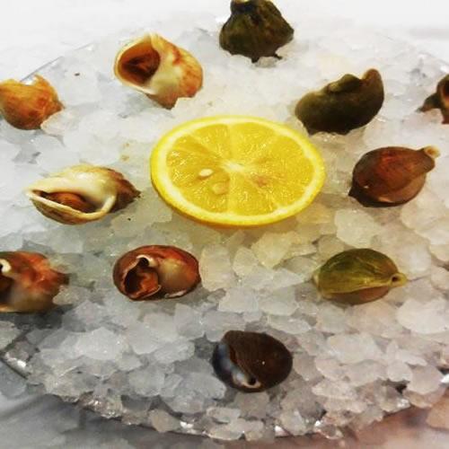 restaurant fruits de mer toulouse, bulots