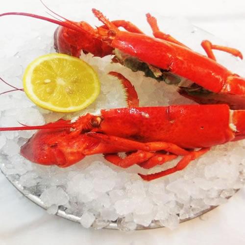 restaurant fruits de mer toulouse, homard
